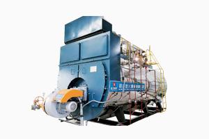 WNS系列冷凝燃油气尊龙官网使用访问zd207