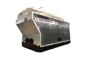 DZH系列燃煤尊龙官网使用访问zd207