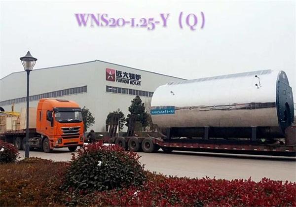 20吨燃气尊龙客服发往山东生物制药厂