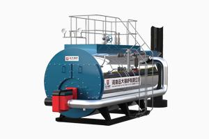 WNS系列低氮燃油气尊龙官网使用访问zd207
