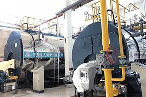 北京医药研究所2台低氮燃气尊龙客服