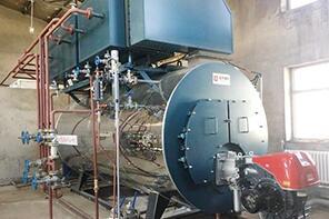 黑龙江齐齐哈尔涂料厂2吨燃气冷凝尊龙官网使用访问zd207