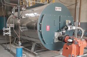 江苏润康电子化工4吨燃气尊龙官网使用访问zd207