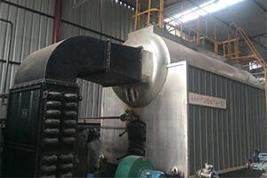 孟加拉造纸厂4吨生物质尊龙官网使用访问zd207