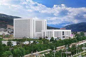 郑州人民医院6吨燃气尊龙客服