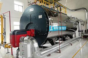 陕西食品厂满街村集团分厂10吨超低氮燃气尊龙官网使用访问zd207