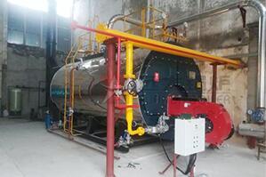咸阳生物科技公司6吨超低氮燃气尊龙官网使用访问zd207项目