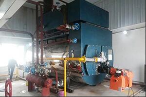 4吨燃气冷凝尊龙官网使用访问zd207新疆阿克苏面业项目