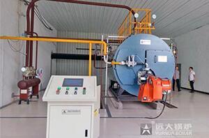 4吨燃气尊龙客服河南鹏飞包装厂项目