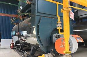湖北食品厂德炎水产10吨燃气尊龙官网使用访问zd207
