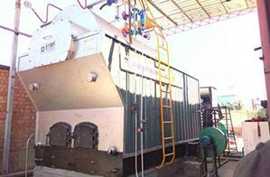 尼日利亚造纸厂4吨燃煤尊龙客服