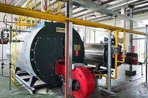 山东威海生物科技公司4吨蒸汽2吨导热油尊龙官网使用访问zd207