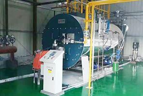 江苏南通一包装厂2吨燃气尊龙官网使用访问zd207