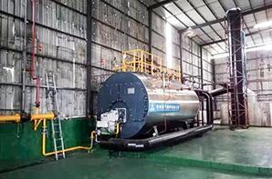 广东造纸厂6吨低氮燃气尊龙客服