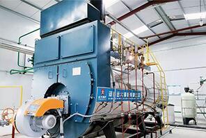 河南华丽包装厂10吨燃气尊龙客服
