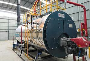 甘肃饮品厂6吨燃气尊龙客服项目