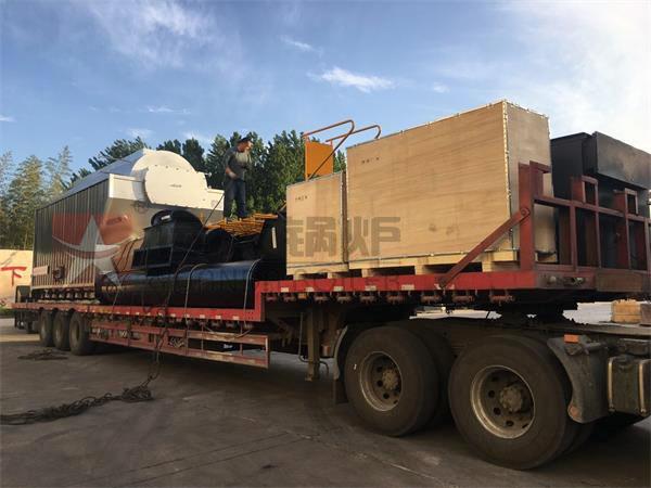 DZH系列6吨生物质尊龙官网使用访问zd207发往连云港