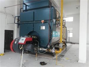 四川食品厂2台10吨燃气冷凝尊龙官网使用访问zd207