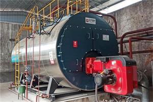 河南焦作纸业公司8吨燃气尊龙客服项目