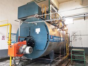 河南化工厂豫光金铅6吨燃气尊龙客服