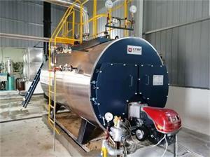 湖北砂带企业2吨燃气尊龙客服项目