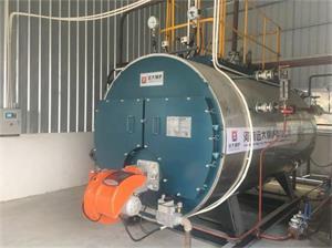 广东清远洗涤厂2吨燃气尊龙客服项目