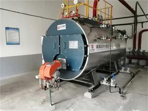 甘肃淀粉厂2吨燃油尊龙客服项目