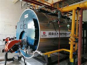 河南郑州时尚服装公司2吨低氮燃气尊龙客服项目