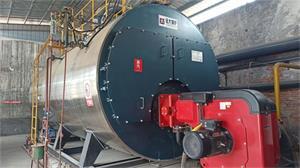 江苏无锡新能源公司8吨燃气尊龙客服项目