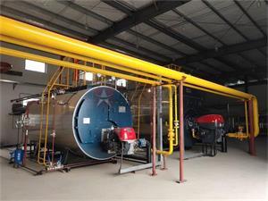 安徽亳州药业10吨和4吨燃气尊龙客服项目