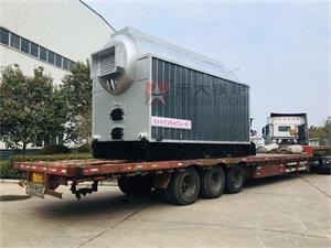 DZL4吨生物质尊龙客服发往西藏
