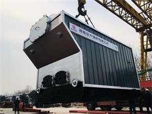 CDZH1.4生物质常压热水尊龙官网使用访问zd207发往辽宁锦州