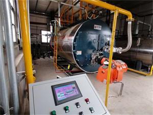 甘肃生物科技公司WNS4-1.25-Y(Q)项目