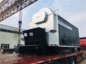 DZL型4吨生物质尊龙客服出口孟加拉