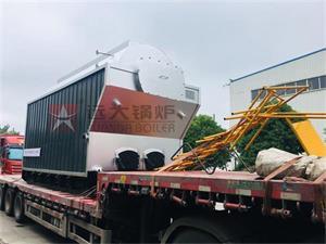 DZH型4吨生物质尊龙客服发生云南保山