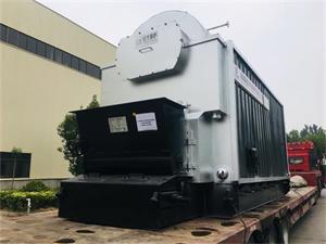DZL4吨生物质尊龙客服出口印度尼西亚