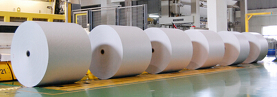 造纸行业1.jpg