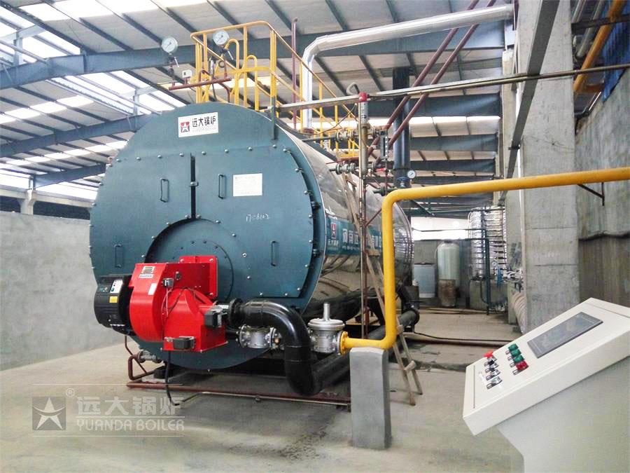皮革厂6吨燃气尊龙官网使用访问zd207运行现场